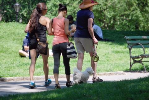 疲れをとるなら寝るより歩く積極的休養が効く