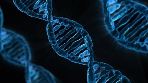 坂上忍が嫌いな人が多いのは遺伝子のせい!?