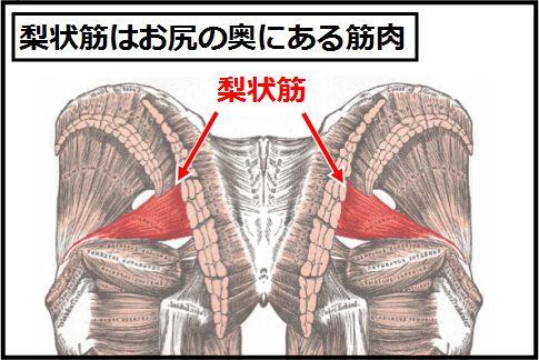 梨状筋ストレッチで骨盤のゆがみを解消する方法