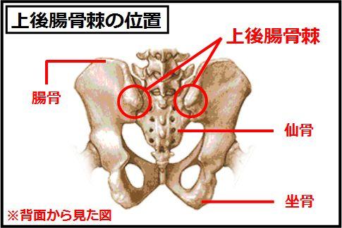 腰痛の真犯人「仙腸関節」を自分で治す方法