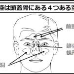 鼻づまりの原因は副鼻腔にある
