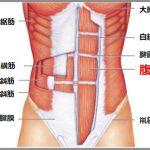 腹筋を割る最小限の筋トレメニュー